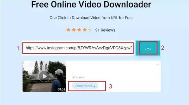 Free Online Video Downloader